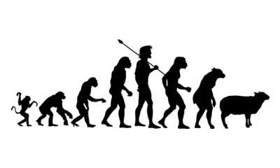 https://karfreitagsgrill.files.wordpress.com/2012/11/evolution_sheeple1.jpg?w=640
